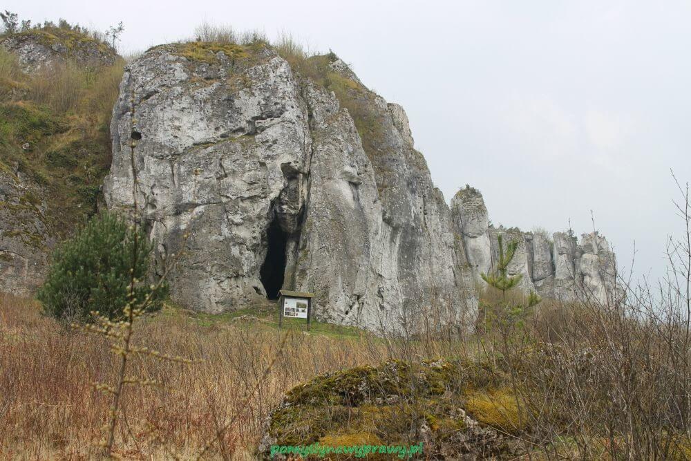 Jaskinia Stajnia