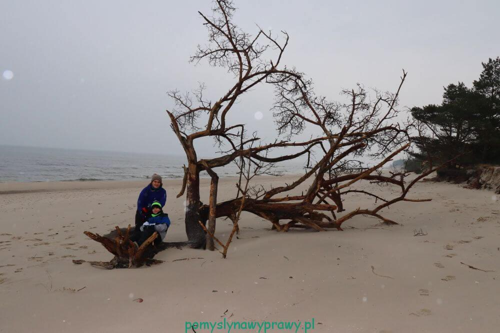 Bałtyk plaża zima