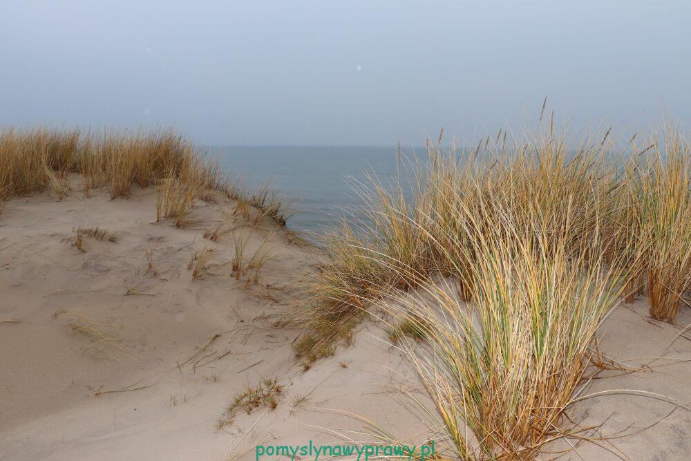 Bałtyk półwysep helski wydmy