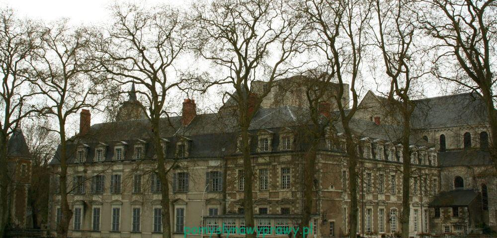 Francja Zamki nad Loarą Beugency