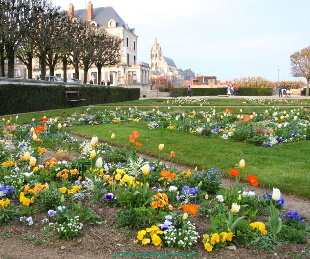 Francja Zamki nad Loarą Blois