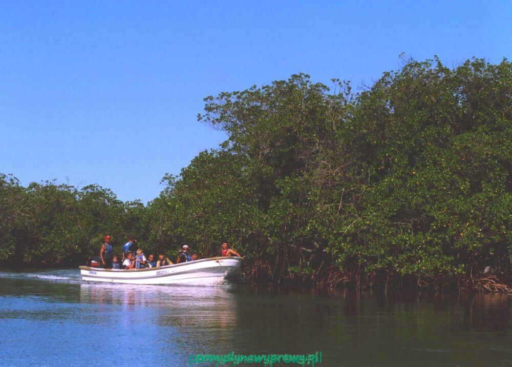 Dominikana Punta Rusia las mangrowy