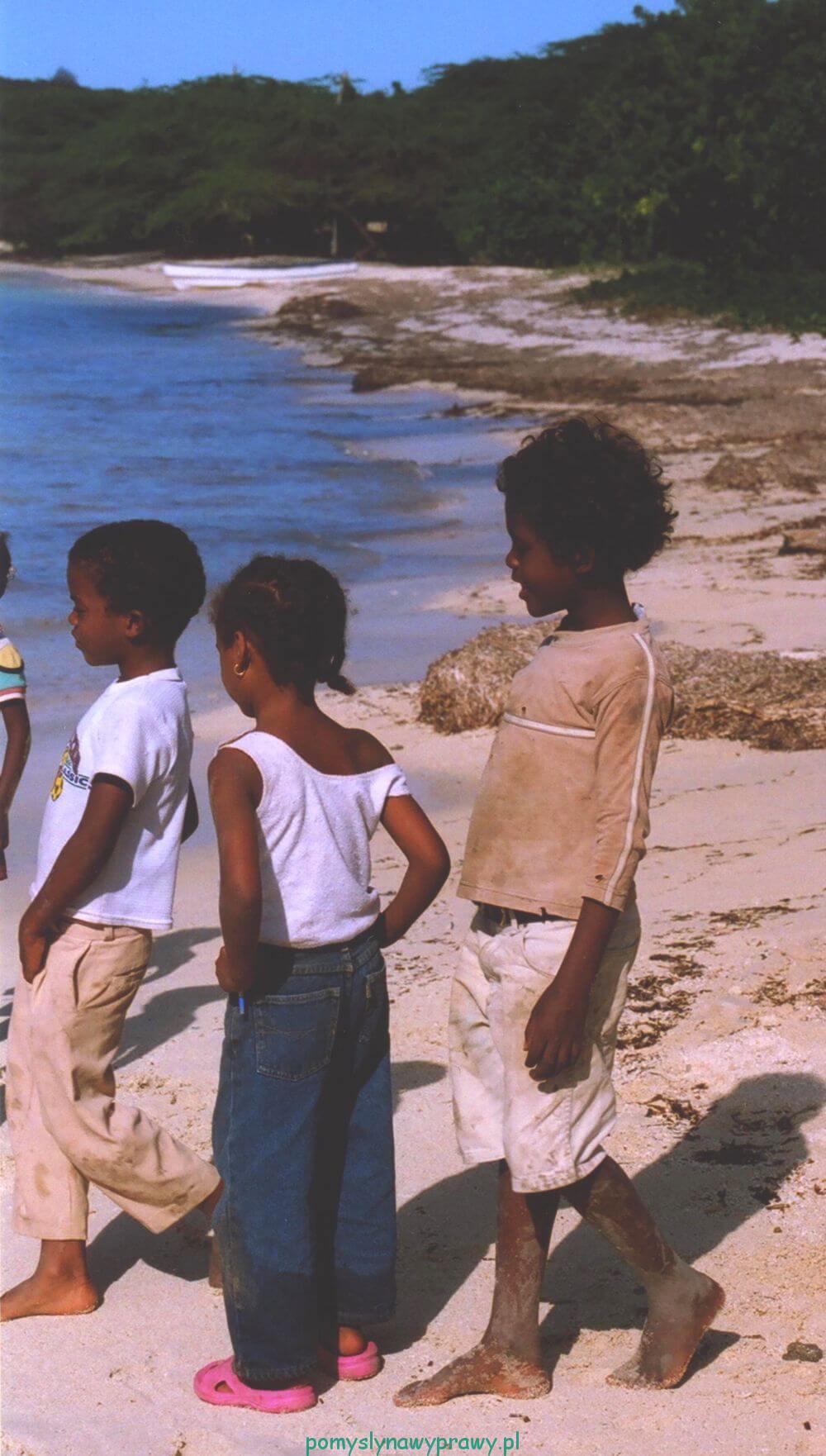 Dominikana Punta Rusia