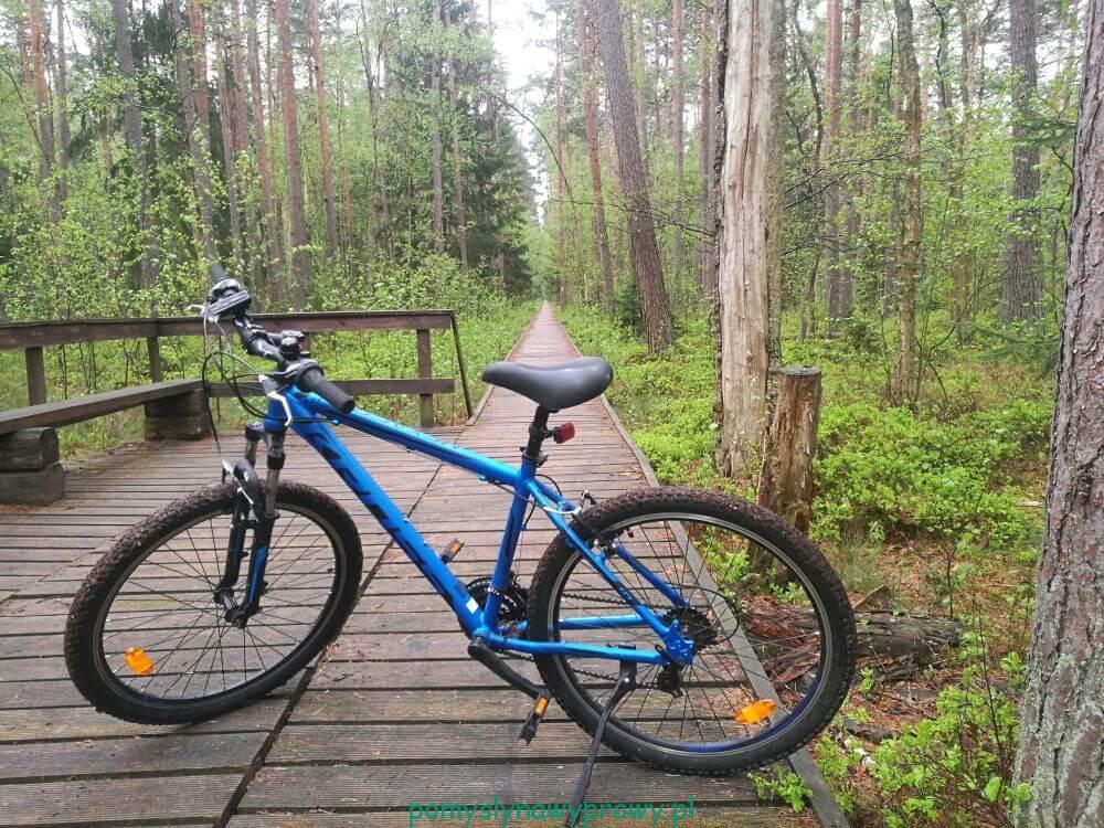 Biebrzański Park Narodowy Rezerwat Czerwone Bagno