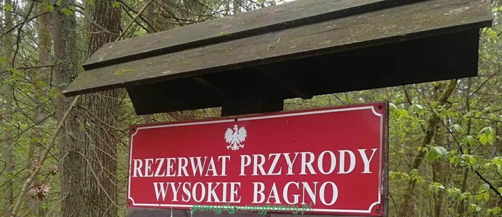 Podlasie Białowieża Puszcza Białowieska Rezerwat Wysokie Bagno