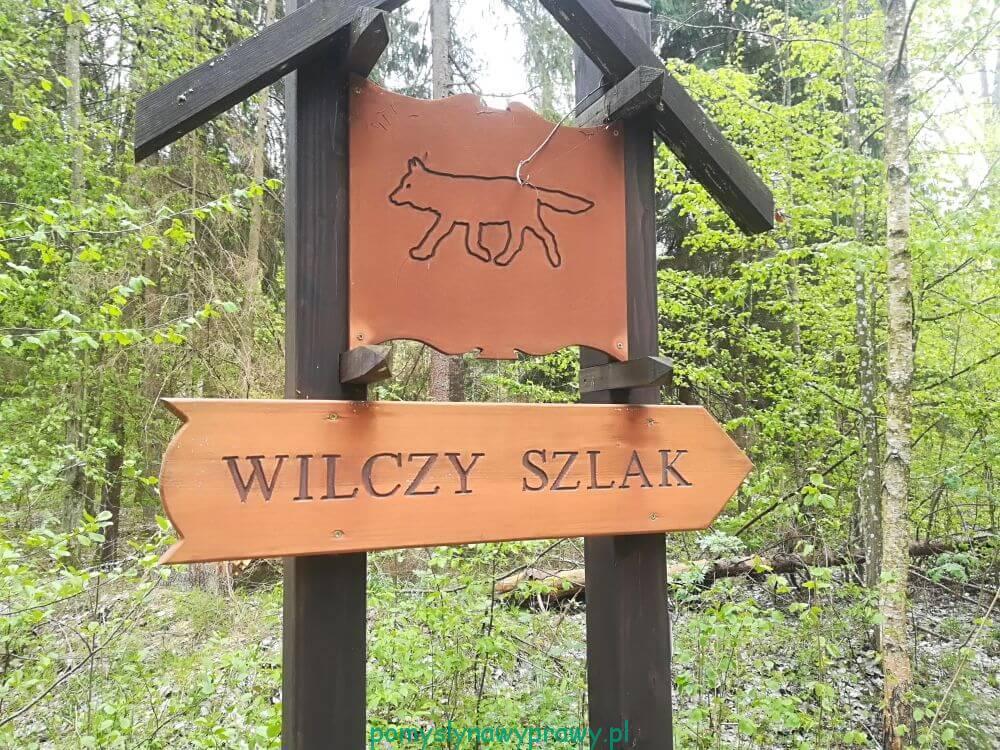 Puszcza Białowieska Wilczy Szlak