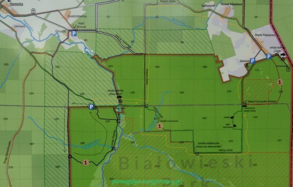 Podlasie Bialowieza Puszcza Bialowieska carska tropina i tropem zubra rowerem mapa