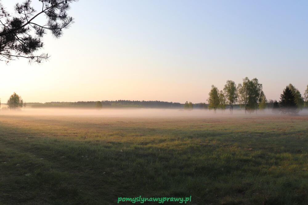 Podlasie Puszcza Białowieska Białowieski Park Narodowy wyprawa na żubry świt