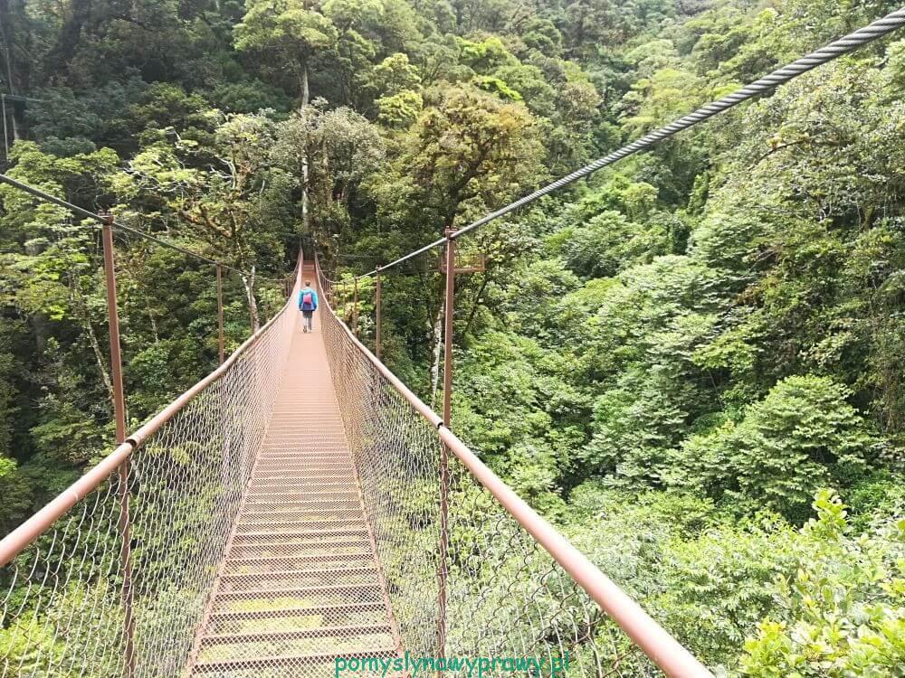 Panama Boquete puentes colgantes