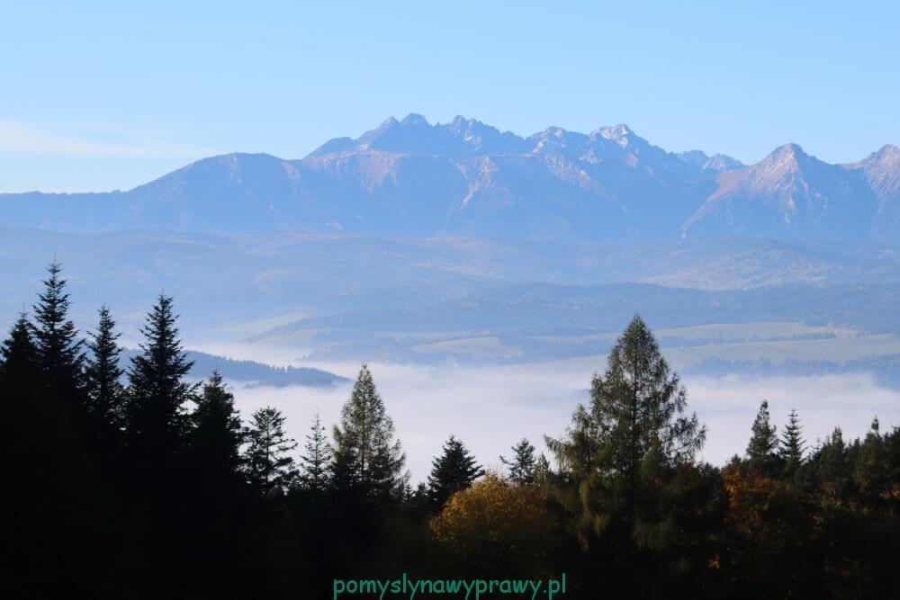 Pieniny Przełęcz Szopka widok na Tatry