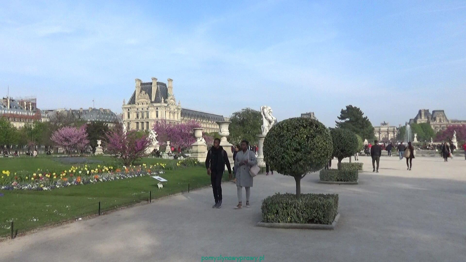 Paryz Ogrody Tuileries
