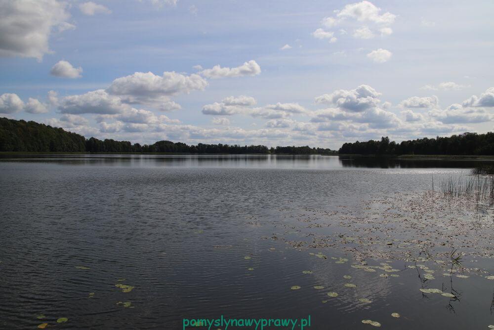 Zacisze nad Wigrami Jezioro Wigry, Rosochaty Róg
