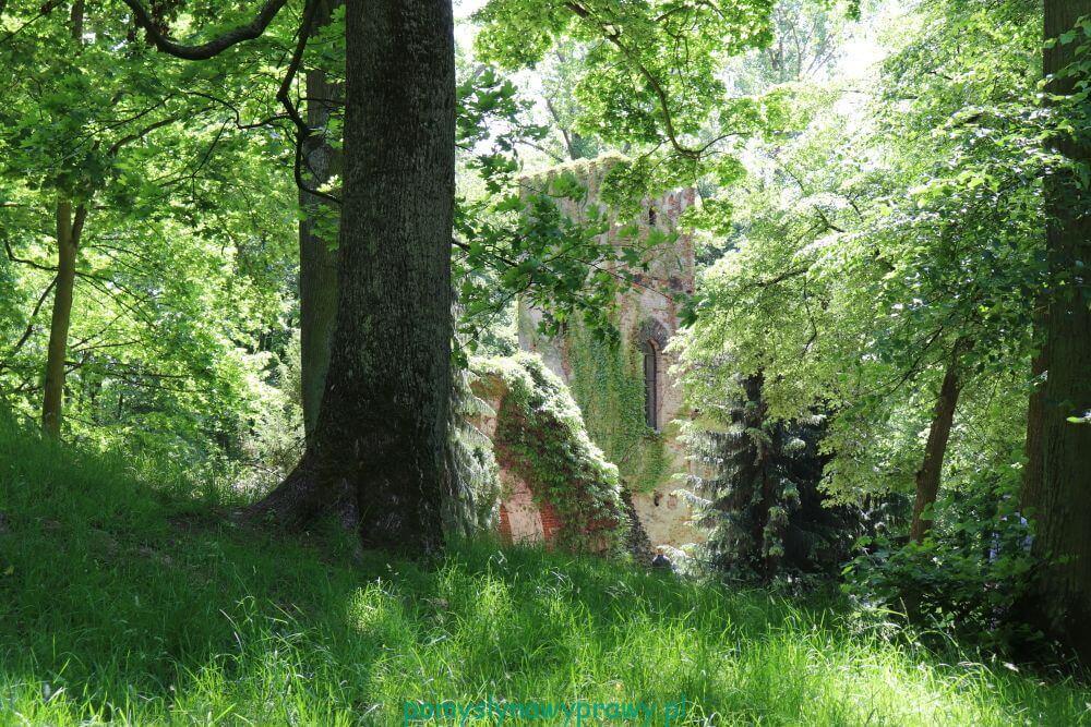 Arkadia romantyczny park Polska
