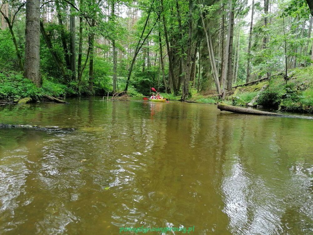 spływy kajakowe mazury
