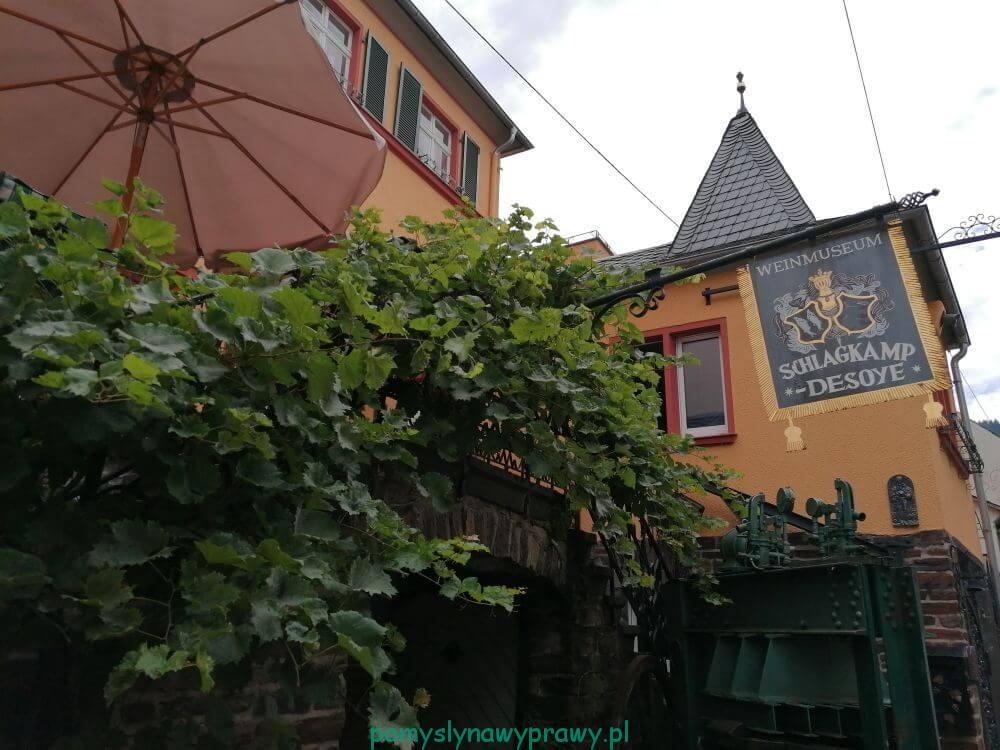 Muzeum Wina Schlagkamp Winehouse