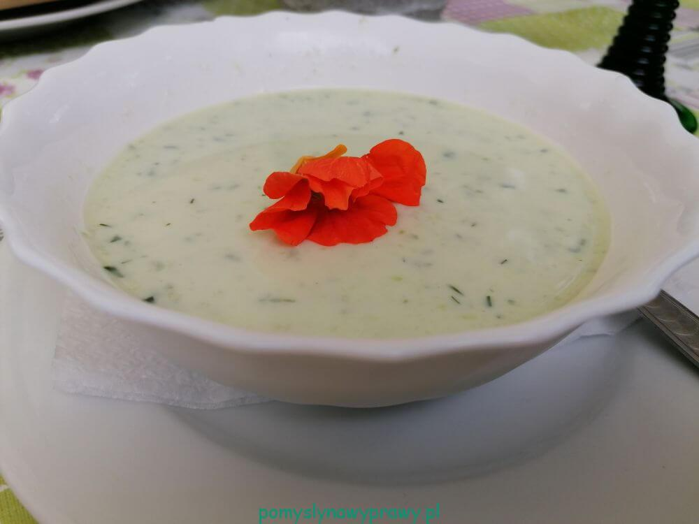 Spreewald zupa ogórkowa