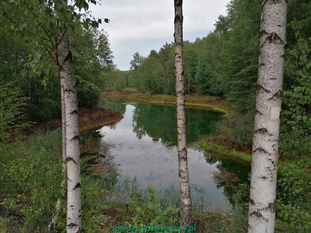 Geopark Łuk Mużakowa