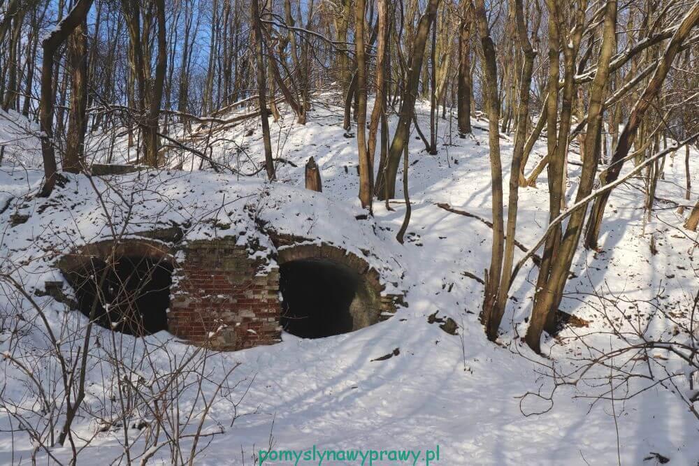 ruiny dworku szaniawskiego