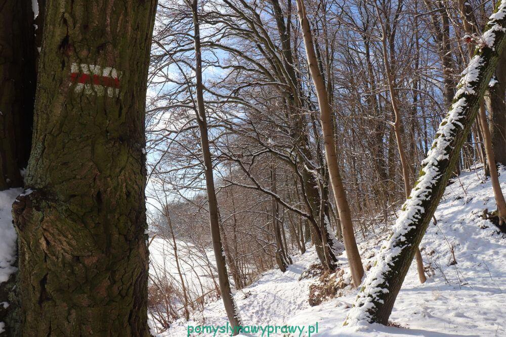 Wąwóz szaniawskiego szlak czerwony