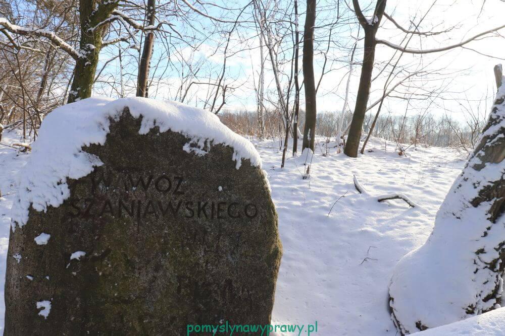 Wąwóz Szaniawskiego