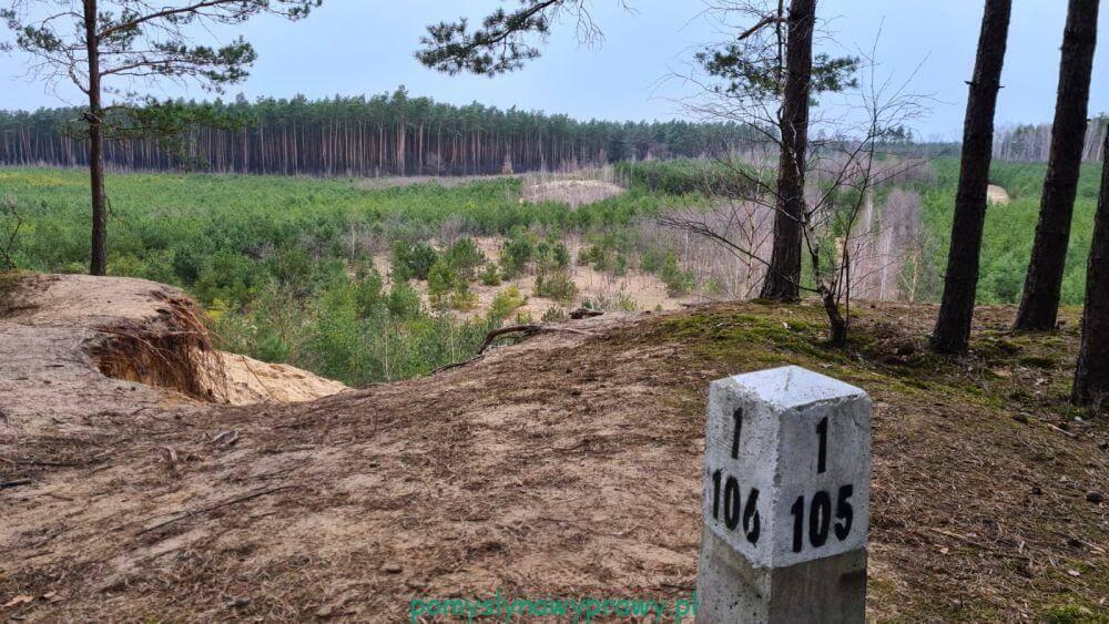 lasy nieporęckie