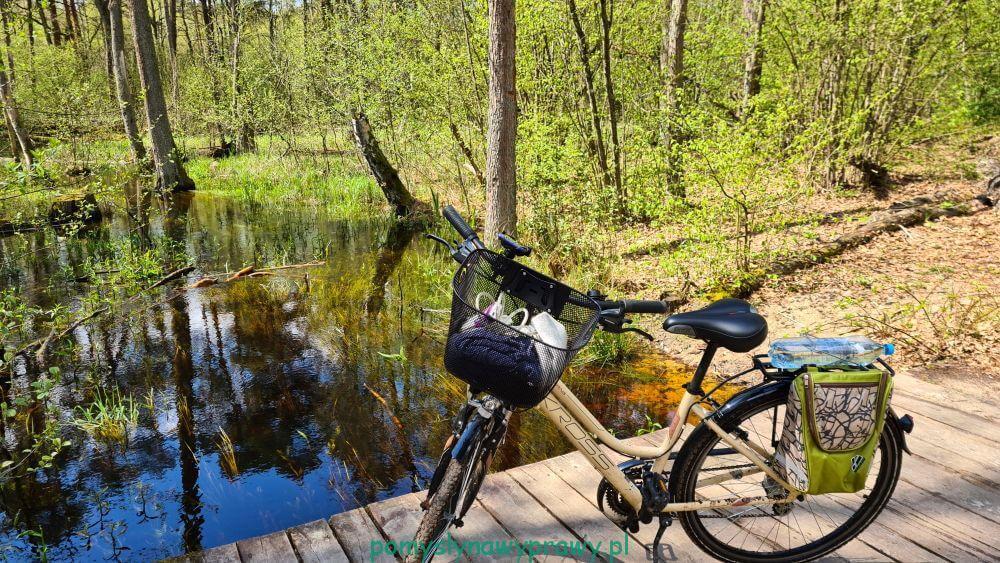 Mogilny Mostek Kampinoski Park Narodowy