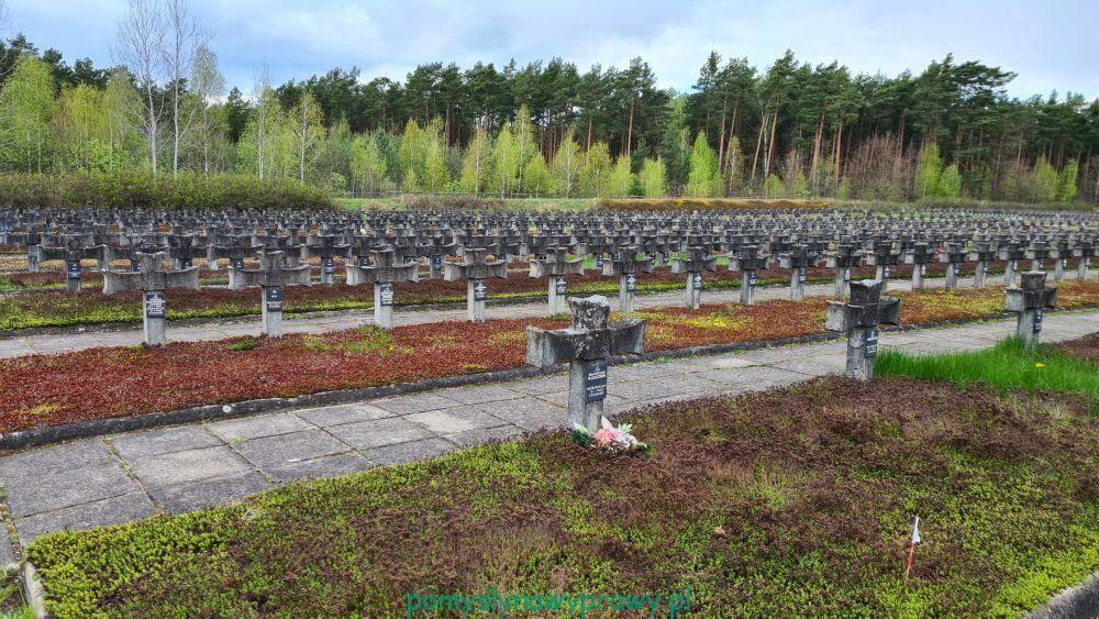 Palmiry cmentarz