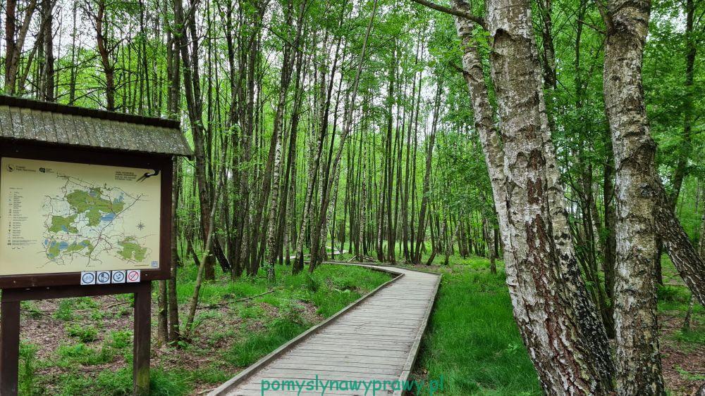 Czahary Poleski Park Narodowy